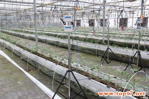 农业物联网系统中rfid技术的作用