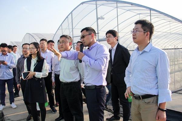 王主任一行关注托普云农智能标准化产品:棚联网
