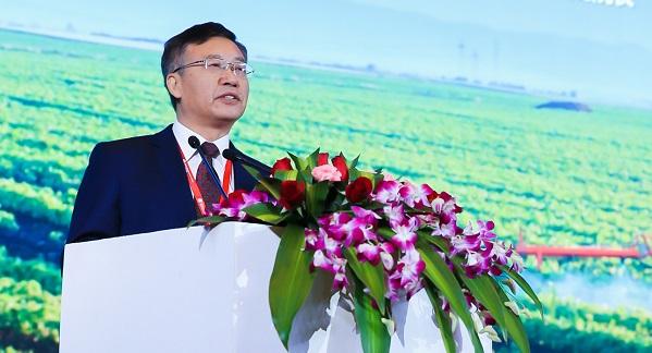 农业农村部规划设计研究院院长张辉