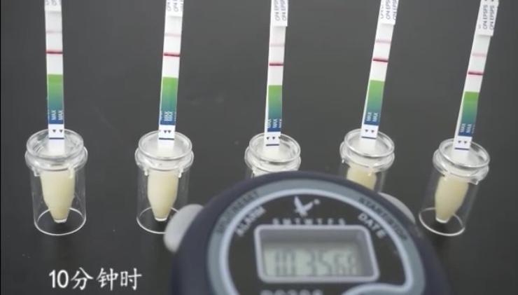 转基因测试纸检测速度快