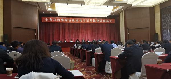 甘肃省全省马铃薯绿色标准化示范基地建设现场会在定西市安定区召开