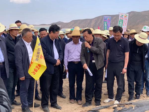 甘肃省农业农村厅厅长李旺泽等领导一行来到安定区马铃薯标准化种植基地