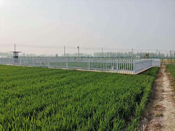 万博怎么下载云农与江苏植保植检站、宿迁农技中心签署三方合作协议
